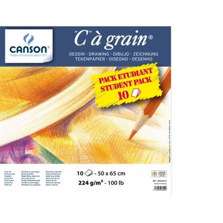 Manipack de 10 feuilles 50x65cm cagrain Canson 224grs